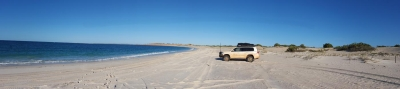 4WD on beach, Cape Leveque