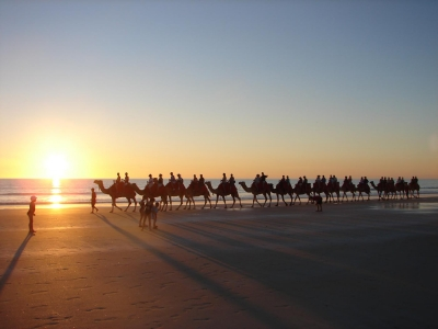 camel trek cable beach