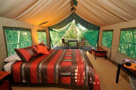 mornington_wilderness_camp