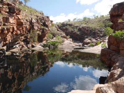 Watering hole, outback australia