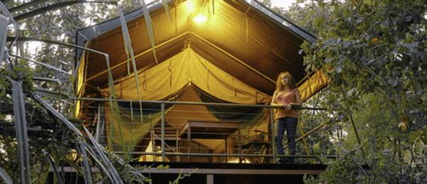 Mornington Wilderness Camp