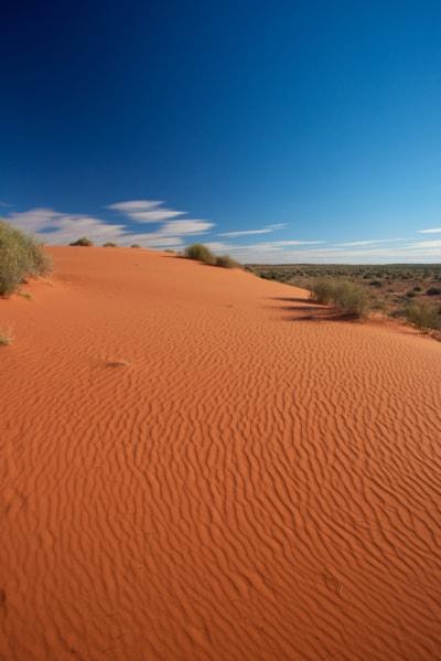 Sand Dunes Mandatory Credit South Australian Tourism Commission
